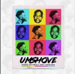 Kabza De Small - Umshove ft. Leehleza